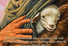 The Servant-Shepherd-Pastor: Gospel Antidote to the Domineering-Bully Pastor
